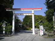 Kamakuragu03